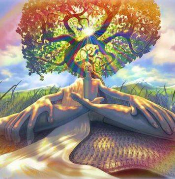 awaken your mind